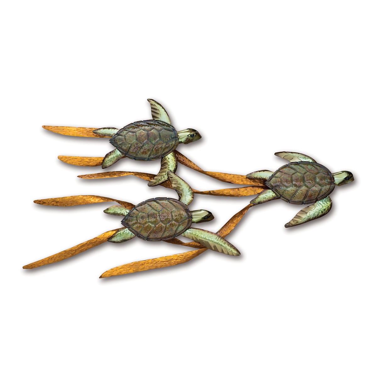 Baby Sea Turtles in Kelp CO099