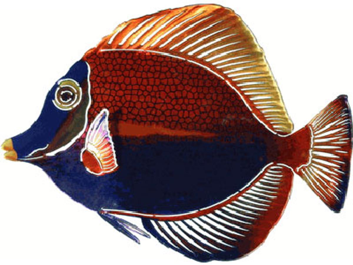 3D Metal Wall Angelfish