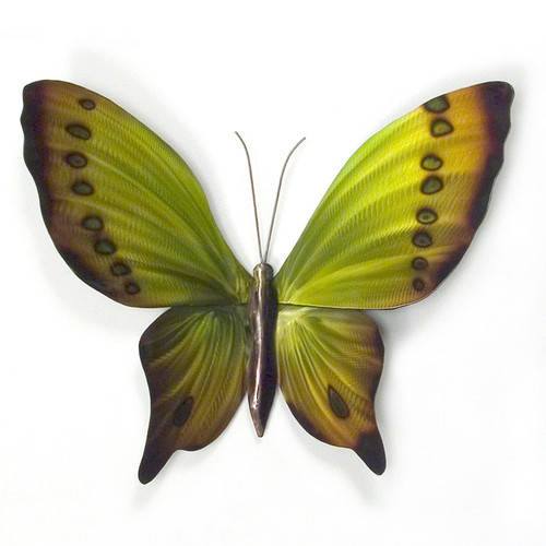 Stainless Butterfly Green, Yellow n Brown