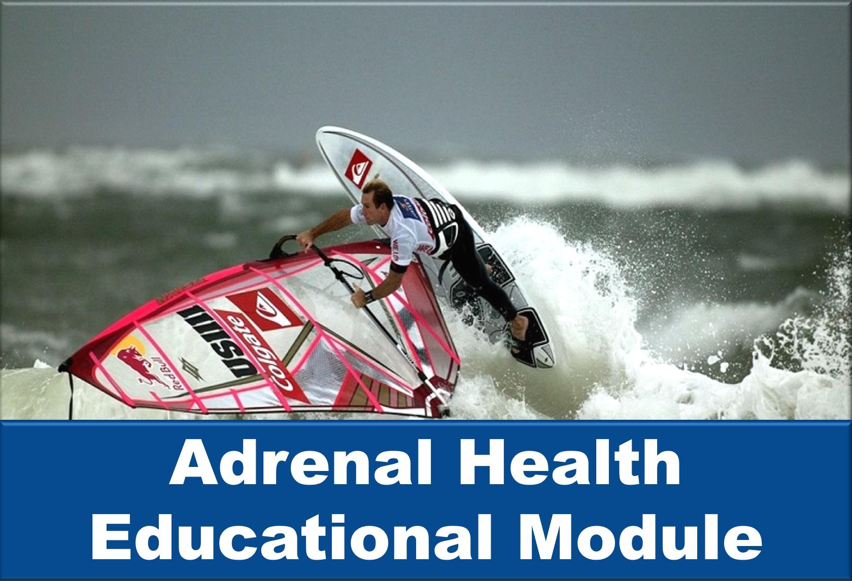 Adrenal Health Educational Module