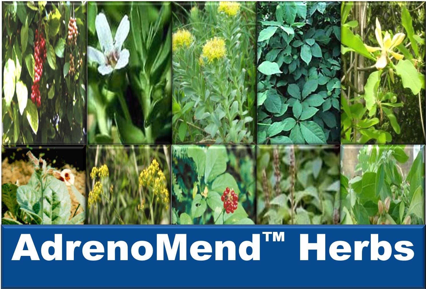 AdrenoMend™ Herbs