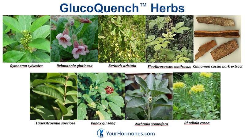glucoquench-herbs-800x458.png