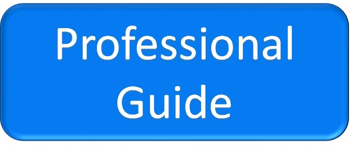 Professional Guide