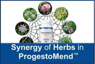 Synergy of Herbs in ProgestoMend™