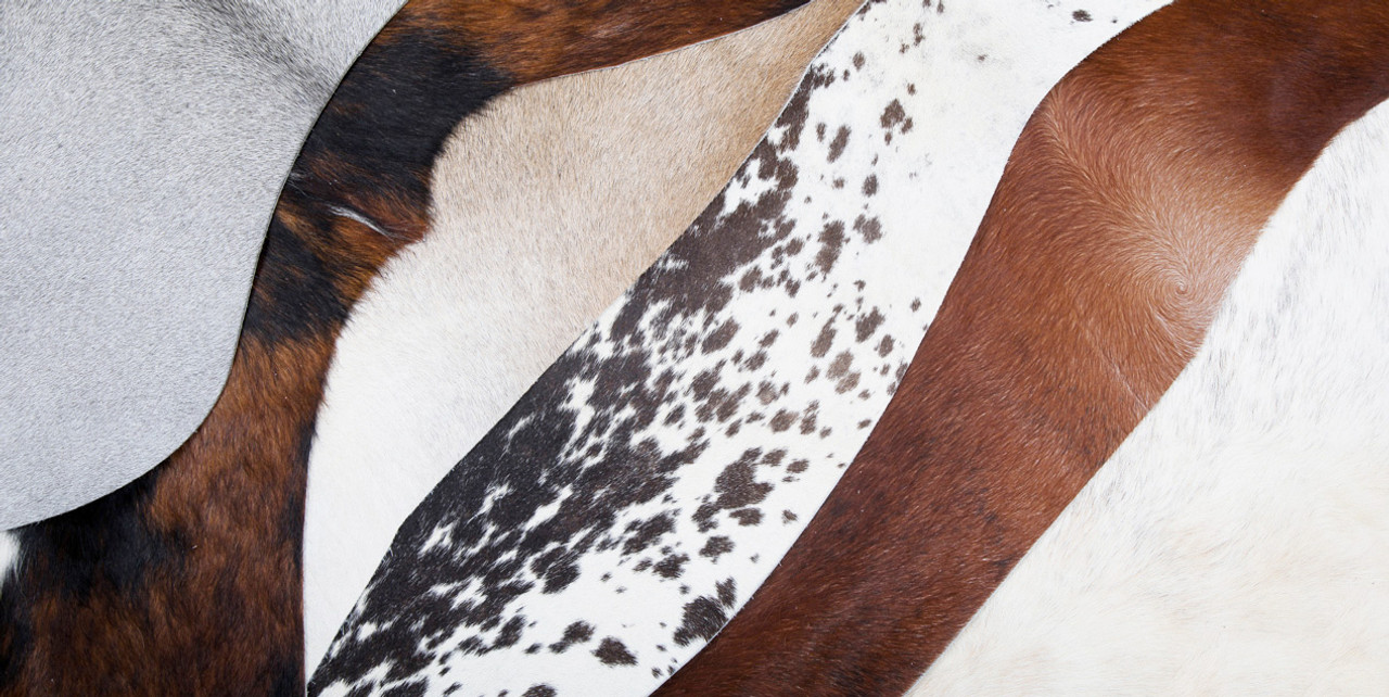 cowhide rug selection