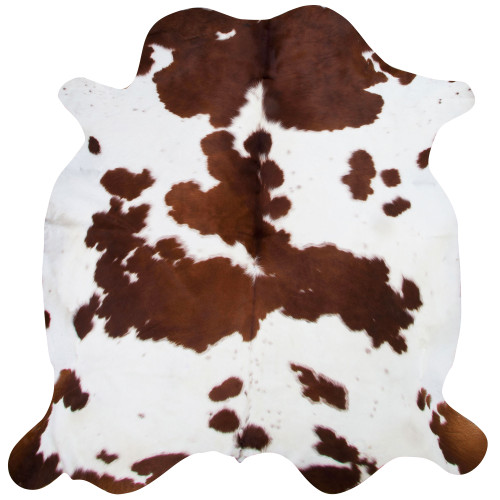 cowhide in chestnut brown and white