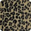 Little Leopard Universal Fit  Snuggle Bag - new print