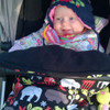 Zoology Black Snuggle Bag to fit Mountain Buggy