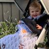 Peekaboo Grey Snuggle Bag to fit Bugaboo Cameleon/Fox