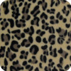 Little Leopard polarfleece