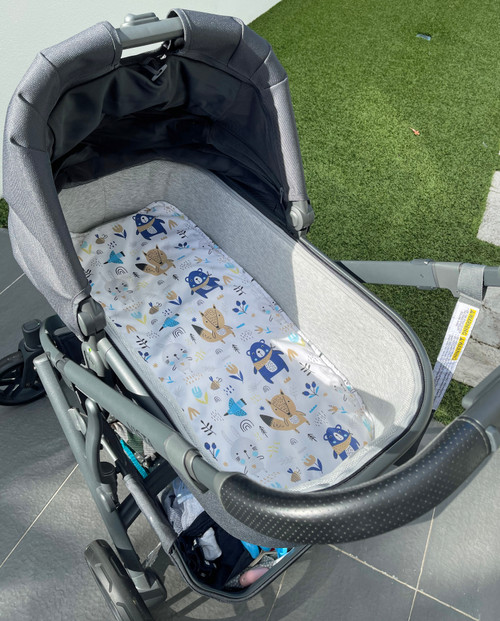 Photographed in Uppababy Vista bassinet