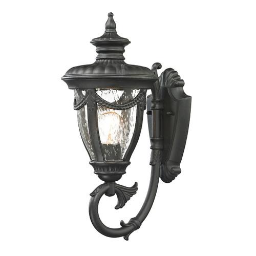 ELK Lighting 45075/1 Anise 1-Light Outdoor Wall Lamp in Textured Matte Black