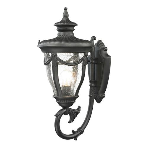 ELK Lighting 45076/1 Anise 1-Light Outdoor Wall Lamp in Textured Matte Black