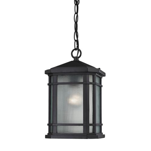 ELK Lighting 87043/1 Lowell 1-Light Outdoor Hanging Lantern in Matte Black