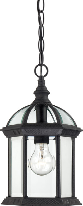"NUVO Lighting 60/4979 Boxwood 1 Light 14"" Outdoor Hanging with Clear Beveled Glass"