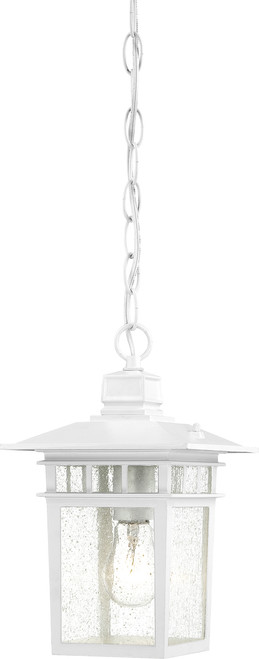 """NUVO Lighting 60/4954 Cove Neck 1 Light 12"""" Outdoor Hang with Clear Seeded Glass"""
