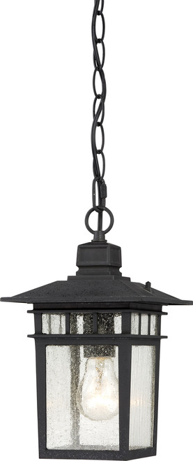 """NUVO Lighting 60/4956 Cove Neck 1 Light 12"""" Outdoor Hang with Clear Seeded Glass"""