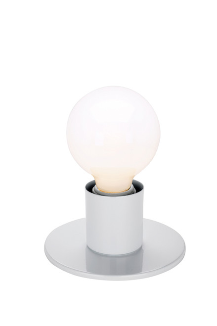 NUVO Lighting 60/4803 1 Light Dual Surface Mount Fixture Medium Base