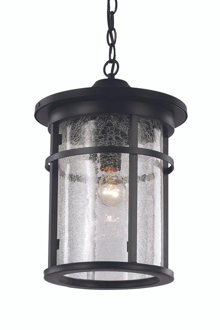 """16"""" Outdoor Black Transitional Hanging Lantern"""