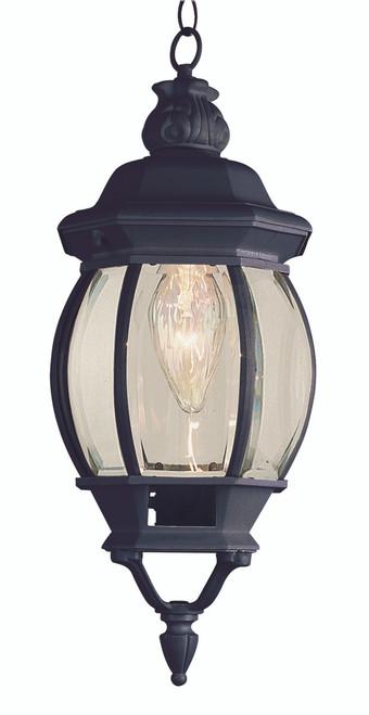 "Parsons 20.5"" Outdoor Black Traditional Hanging Lantern"