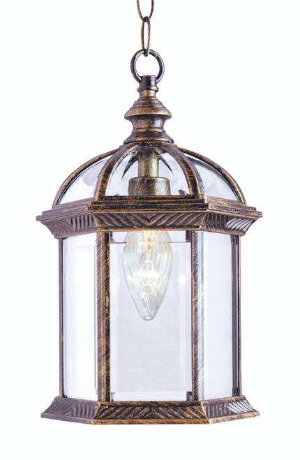 """Wentworth 17.5"""" Outdoor Black Gold Traditional Hanging Lantern"""
