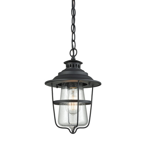 ELK Lighting 45121/1 San Mateo 1-Light Outdoor Pendant in Textured Matte Black