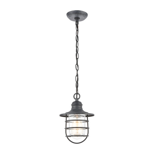 ELK Lighting 45223/1 Vandon 1-Light Hanging in Aged Zinc with Clear Glass