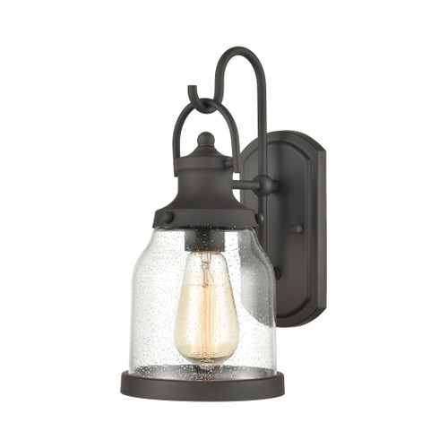 ELK Lighting 45420/1 Renford 1-Light Outdoor Sconce in Architectural Bronze with Seedy Glass