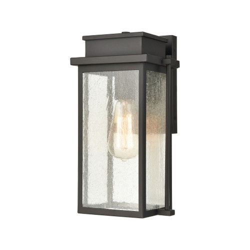 ELK Lighting 45440/1 Braddock 1-Light Outdoor Sconce in Architectural Bronze with Seedy Glass Enclosure
