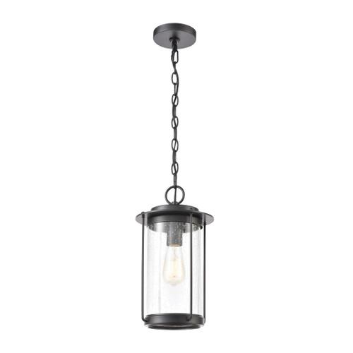 ELK Lighting 46662/1 Devonshire 1-Light Hanging in Matte Black with Seedy Glass