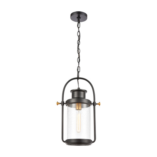 ELK Lighting 46672/1 Wexford 1-Light Hanging in Matte Black with Seedy Glass