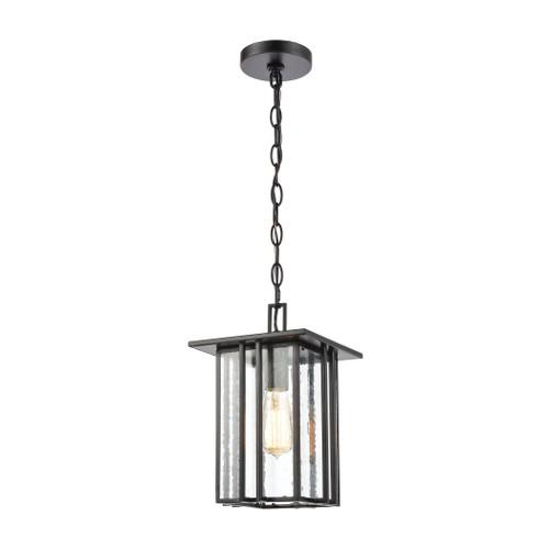 ELK Lighting 46693/1 Radnor 1-Light Hanging in Matte Black with Seedy Glass