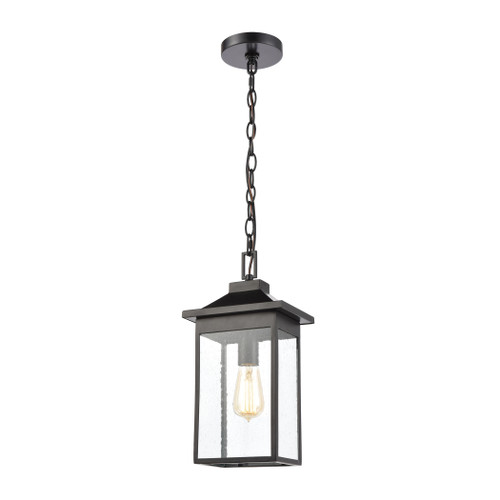 ELK Lighting 46703/1 Lamplighter 1-Light Hanging in Matte Black with Seedy Glass