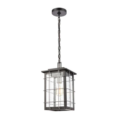 ELK Lighting 46713/1 Brewster 1-Light Hanging in Matte Black with Seedy Glass