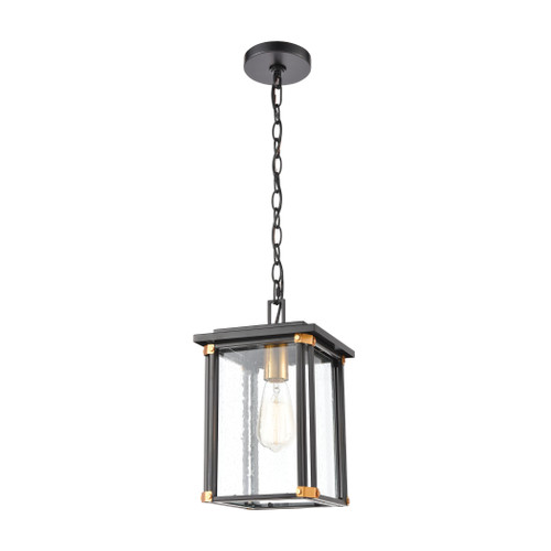 ELK Lighting 46723/1 Vincentown 1-Light Hanging in Matte Black with Seedy Glass