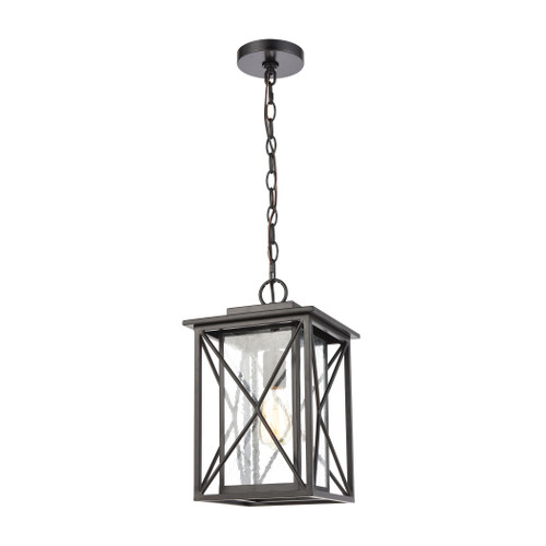 ELK Lighting 46753/1 Carriage Light 1-Light Hanging in Matte Black with Seedy Glass