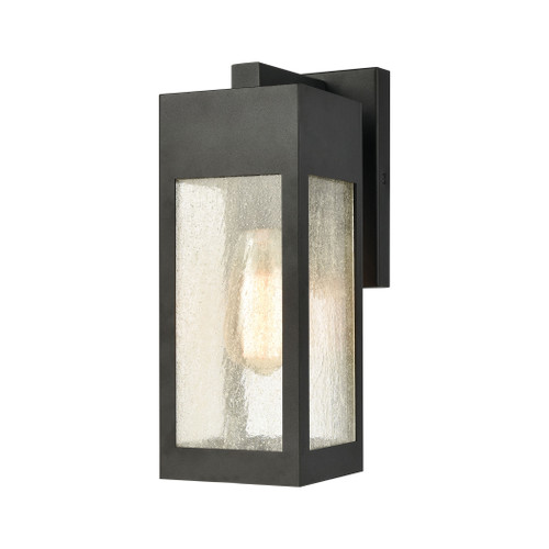 ELK Lighting 57300/1 Angus 1-Light Outdoor Sconce in Charcoal with Seedy Glass Enclosure