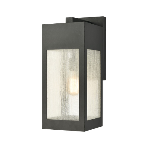 ELK Lighting 57302/1 Angus 1-Light Outdoor Sconce in Charcoal with Seedy Glass Enclosure