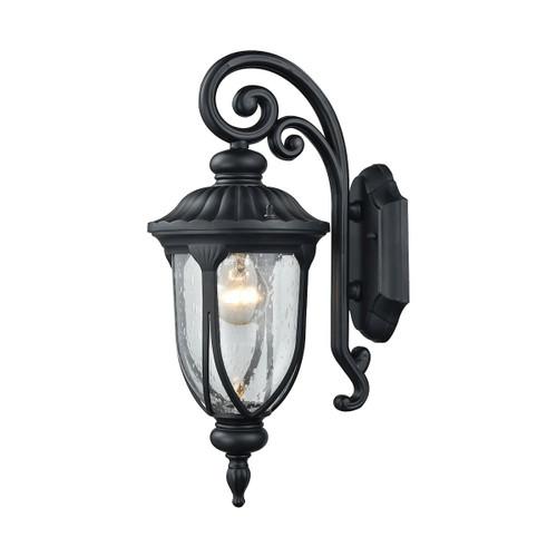 ELK Lighting 87100/1 Derry Hill 1-Light Outdoor Wall Lamp in Matte Black