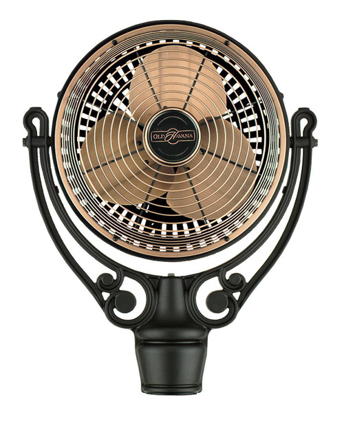 Fanimation FPH210AC Old Havana Motor Assembly - Antique Copper At CLW Lighting!
