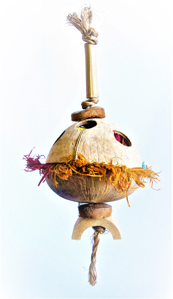 Coconut Corn Puff Natural