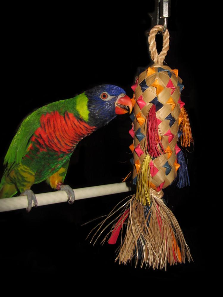 Parrot Bird Toy Shreddable Planet Pleasures Large Pinata