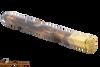 Kill Shot Chestnut Pipe Tamper