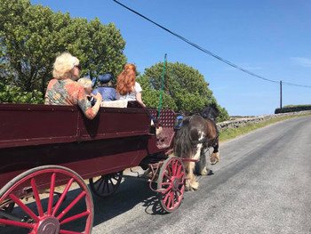 No better way to get around the Aran Isle than by horse and cart!!