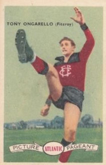 1958 Atlantic Victorian league Stars Fitzroy Lions TONY ONGARELLO