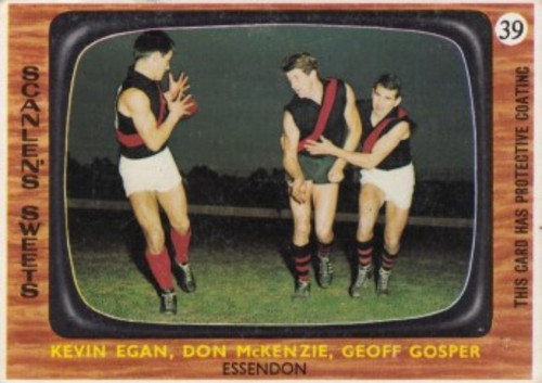 1967 VFL Scanlens #39 ESSENDON BOMBERS Team Card