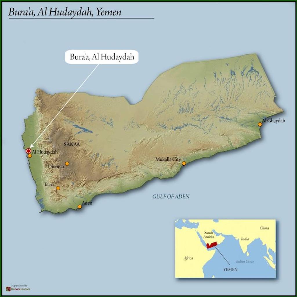 Yemen Mocca LTD