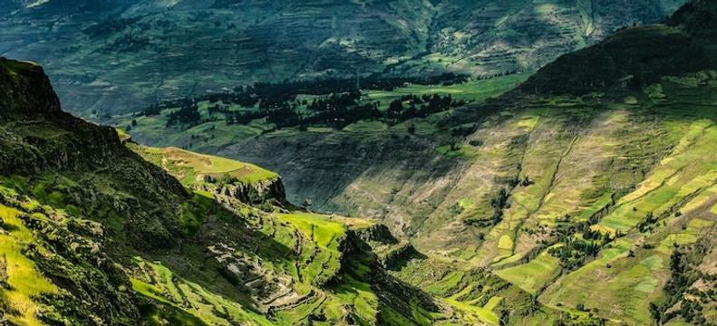 Introducing ETHIOPIA GELANA ABAYA NATURAL LTD