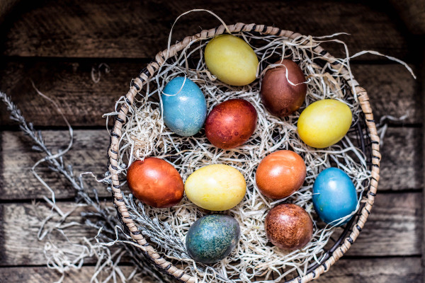 Celebrate with ACR with our Website Easter Egg Hunt!