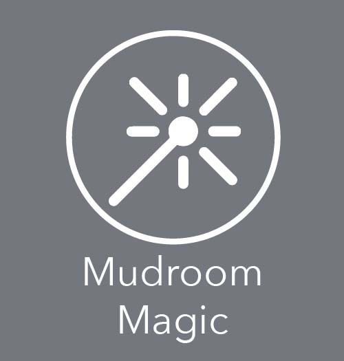 blog link to creating a magical mudroom